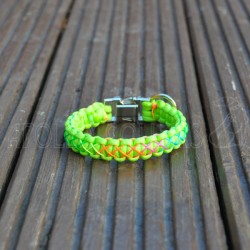 Cobra Paracord collar with Rainbow cord (Lime green)